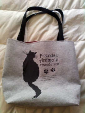 T-Shirt Totebag for Fundraiser--2010